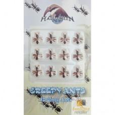 Toptan 12 li Mini Karıncalar